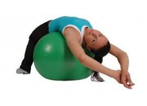 Exercise Ball MSD 3260